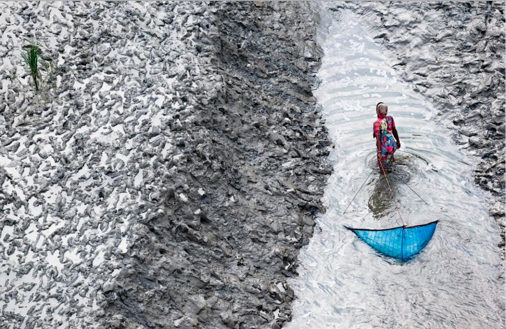 FEMME PÊCHANT AU FILET SUR UN BRAS DU DELTA,SUD DE PADMAPUKUR, DISTRICT DE KHULNA, BANGLADESH © Y.Arthus-Bertrand